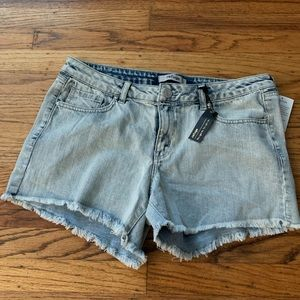 Refuge Frayed Shorts